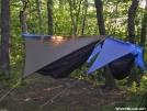 Hammocking on Springer by bigcranky in Hammock camping