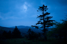 Hiking At Mt Rogers, 5/21-22/2011 by bigcranky in Views in Virginia & West Virginia