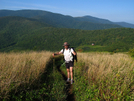 Roan Mountain Hike by bigcranky in Section Hikers