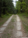 Forest Service Rd at Michener Cabin PA by StarLyte in Virginia & West Virginia Trail Towns