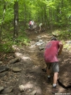 Phil, Cadillac Trail Crew working on the AT north of Blackburn