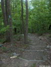 Hard working Trail Crew built these stairs by StarLyte in Virginia & West Virginia Trail Towns