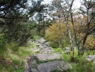 Rocky trail in Grayson SP