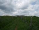old farm road trail VA
