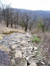 Rocky trail in Georgia by mountaineer in Trail & Blazes in Georgia