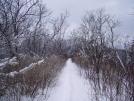 Snowy trail 1 - Smokys April 2005