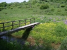 Trail bridge in VA