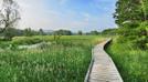 Pochuck Boardwalk by jimplatz in Views in New Jersey & New York