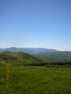 Max Patch 2009