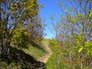 May 2009 Hike