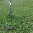 Bovine Landmine by Bucketfoot in Trail & Blazes in New Jersey & New York