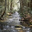 Creek Crossing  Day 2