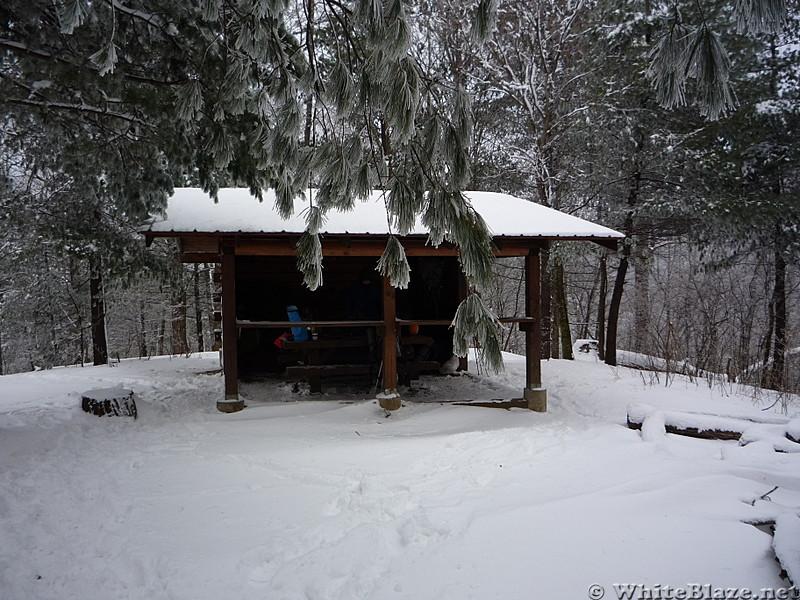 Shelter Georgia