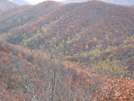 Fall 09 Pics