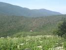 Hump Mtn Pics