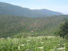 Hump Mtn Pics by The Cleaner in Views in North Carolina & Tennessee