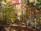 Fall Pics by The Cleaner in Views in North Carolina & Tennessee