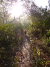 Florida Trail - Ocala National Forest by solstice in Florida Trail
