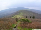 Lofty bald view north of Carver\'s Gap by Aesop in Flowers