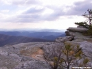 Virginia Pine at McAfee Knob
