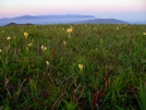 GSMNP From Max Patch by Ramble~On in Views in North Carolina & Tennessee