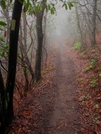 Fog by Ramble~On in Trail & Blazes in North Carolina & Tennessee