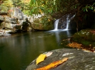 Wildcat Falls by Ramble~On in Views in North Carolina & Tennessee