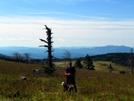 Virginia High Country by Ramble~On in Views in Virginia & West Virginia