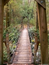 Bridge on Foothills Trail by Ramble~On in Other Trails