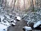 Joyce Kilmer in Winter by Ramble~On in Views in North Carolina & Tennessee