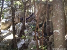 Hammock on the rocks by Ramble~On in Hammock camping