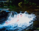 Trail Jacuzzi by Ramble~On in Other Trails