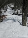 Snow Drifts In The Smokies by Ramble~On in Trail & Blazes in North Carolina & Tennessee