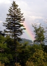 Pot O' Gold ? by Ramble~On in Other