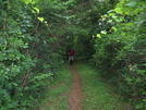 Green Tunnel by Ramble~On in Trail & Blazes in Virginia & West Virginia