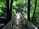 Tye River Suspension Bridge by Ramble~On in Trail & Blazes in Virginia & West Virginia