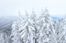 Newfound Gap by Ramble~On in Views in North Carolina & Tennessee