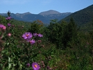 Mt Washington by Ramble~On in Trail & Blazes in New Hampshire