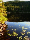 Speck Pond by Ramble~On in Trail & Blazes in Maine