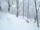 Winter Wonderland by Ramble~On in Other Trails