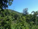 Three Ridges, The Priest, And Spy Rock by gebailey in Trail & Blazes in Virginia & West Virginia