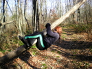 Appalachian Trail by rachaeljessica in Section Hikers