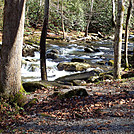 Little River Trail, GSMNP by CamelMan in Views in North Carolina & Tennessee
