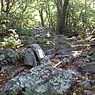 More PA rocks......... by Spiffy in Trail & Blazes in Maryland & Pennsylvania