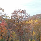 foliage in harriman by hikerboy57 in Views in New Jersey & New York