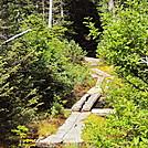 camerashots 009 by hikerboy57 in Trail & Blazes in Maine