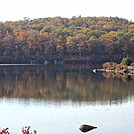 Harriman foliage