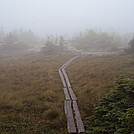 Grafto loop trail eastern half