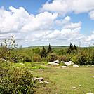 Grayson Highlands Hike by Furlough in Trail & Blazes in Virginia & West Virginia