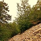 Austin Mtn Trail